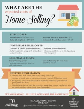 Home Selling Infographic Flyer